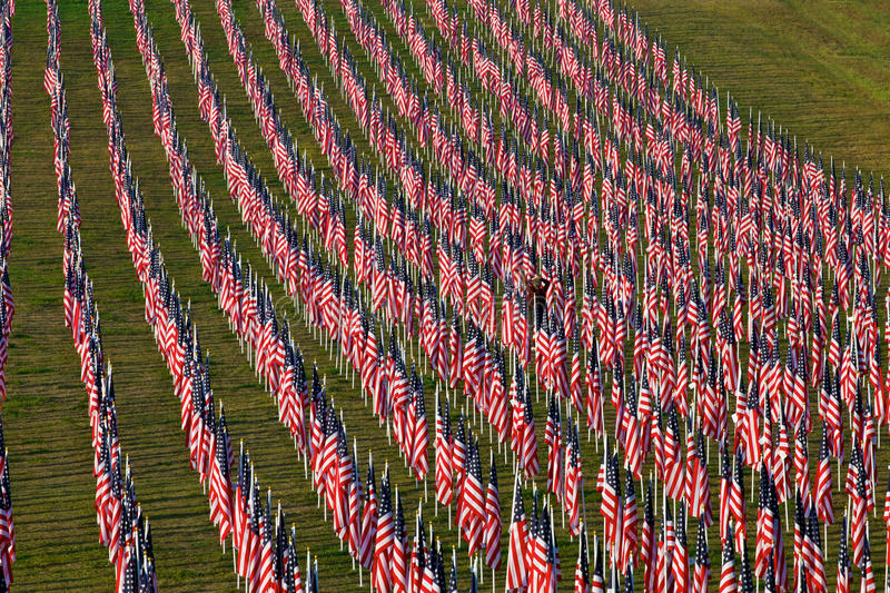 Flags in the Healing Fields for 9/11 royalty free stock images