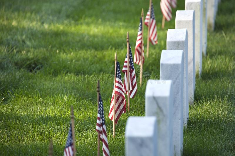 Flags of Memorial Day before tombstones at Arlington National Cemetery royalty free stock photo