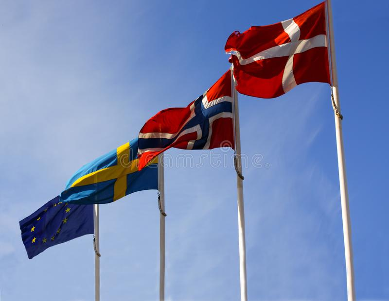 Flags from the Scandinavian countries Denmark, Norway and Sweden waving from flagpoles together with the EU, European Union, flag royalty free stock photos