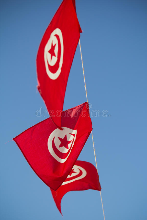 Flags of Tunisia. Against blue sky royalty free stock photos