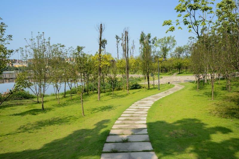 Flagstone πορεία στο χορτοτάπητα όχθεων της λίμνης την ηλιόλουστη θερινή ημέρα στοκ εικόνες