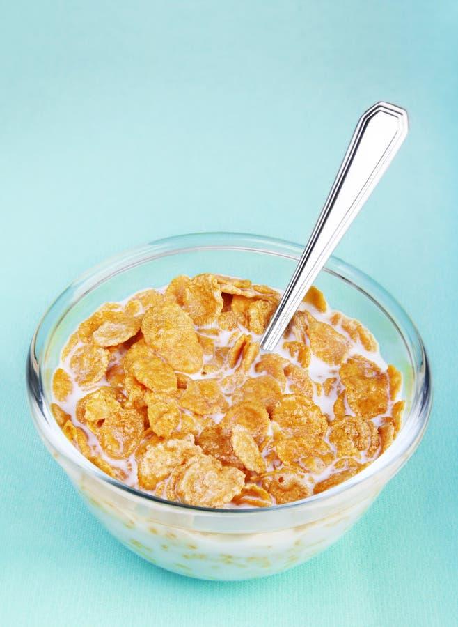 Flake Corn Royalty Free Stock Photo