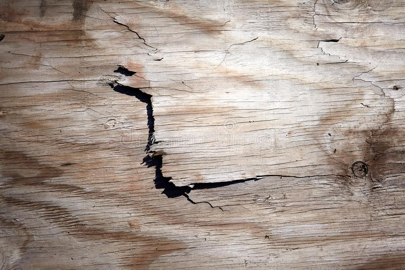 Flaking cracked surface of old weathered wood royalty free stock photos