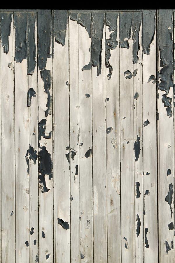 Flaky краска на древесине. стоковые фото