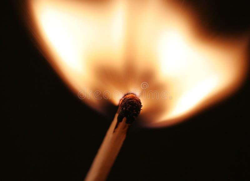 Flama del emparejamiento fotografía de archivo