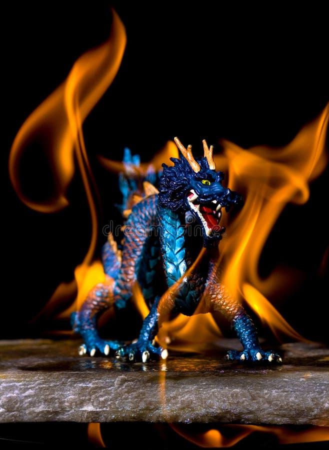 Flama do dragão imagem de stock royalty free
