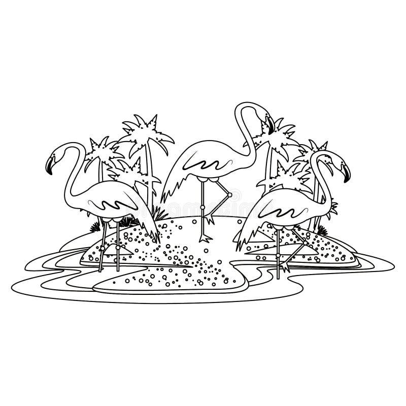 Flamand sur la bande dessinée d'icône d'île en noir et blanc illustration stock
