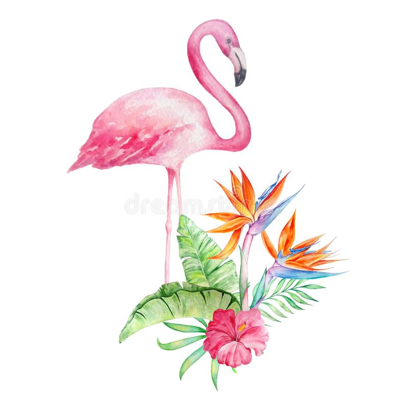 Flamant d'aquarelle avec un bouquet2 tropical illustration stock