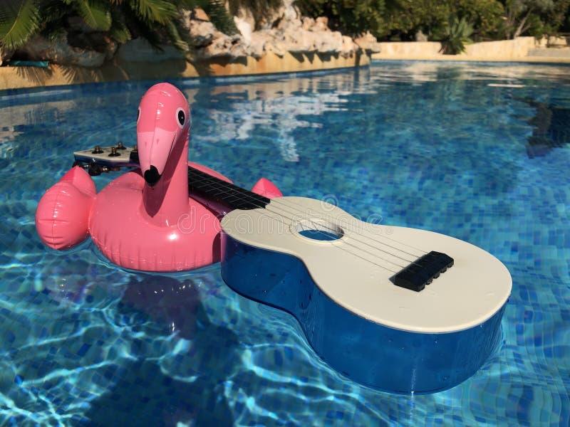 Flamant et ukulélé roses dans la piscine images libres de droits