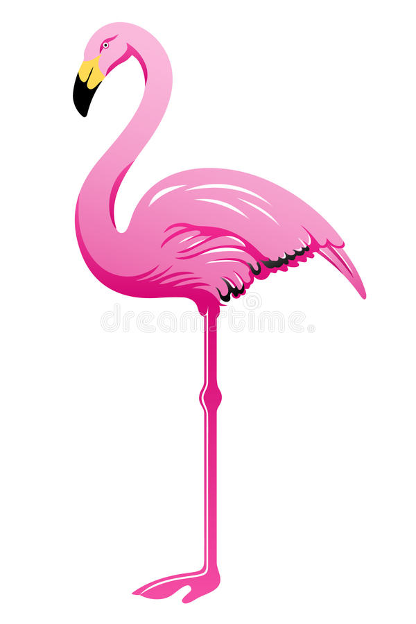 Flamant rose illustration libre de droits