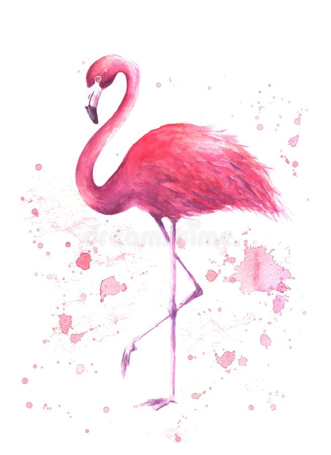 Flamant rose d'aquarelle illustration stock