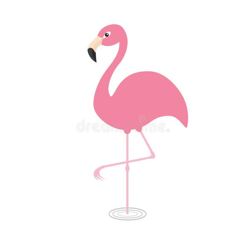Flamant rose se tenant sur une jambe Cercles sur l'eau Oiseau tropical exotique Collection d'animal de zoo Personnage de dessin a illustration de vecteur