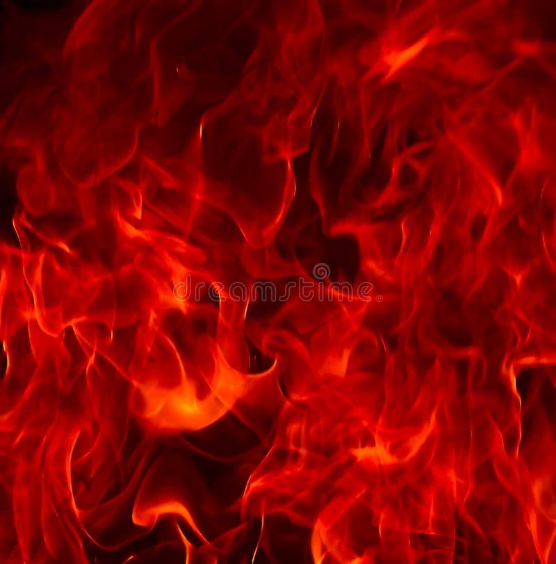 Flamas do incêndio vermelho do inferno imagem de stock royalty free
