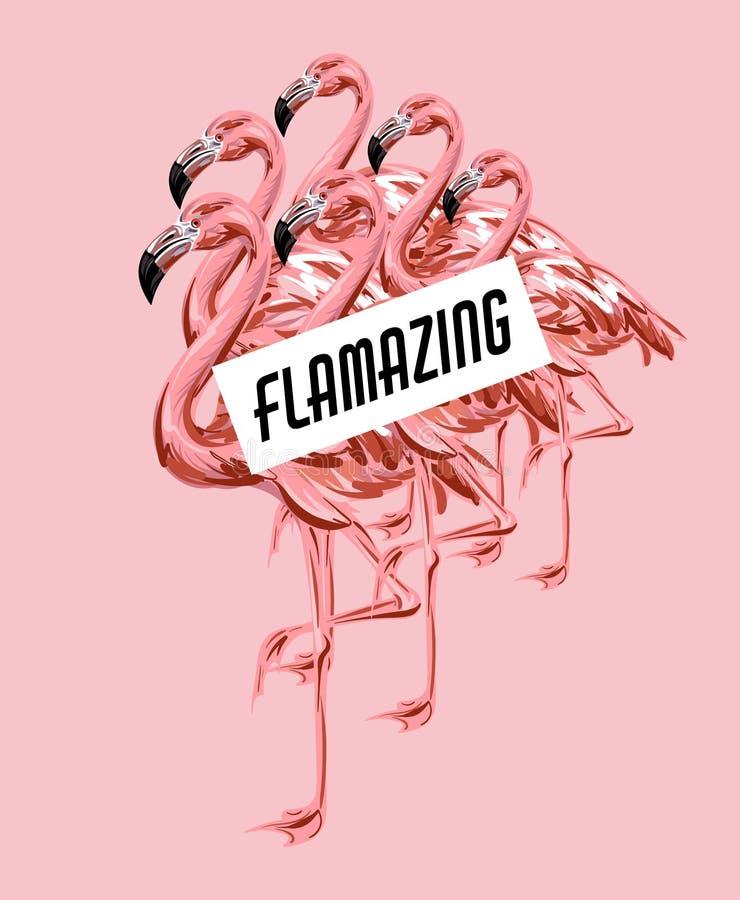 Flamazing Vector el cartel colorido con el ejemplo dibujado mano del flamenco aislado ilustración del vector