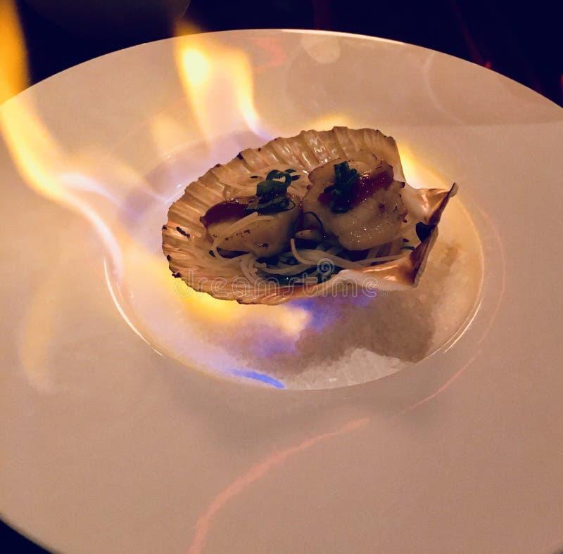 Flambe seashell obrazy royalty free
