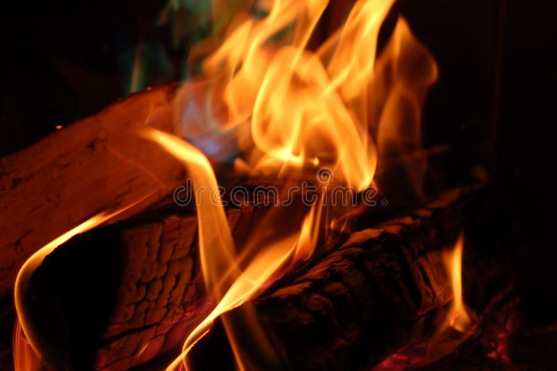 Download Flame #4 stock image. Image of danger, flametongue, campfire - 1476683