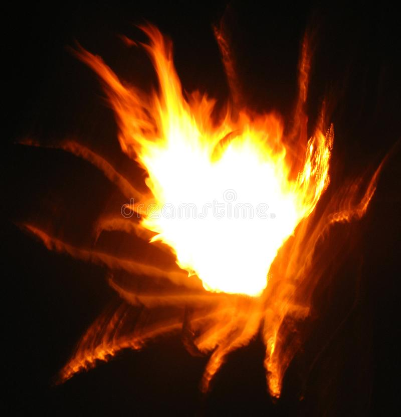 flame abstract 5 (fireflower) stock images