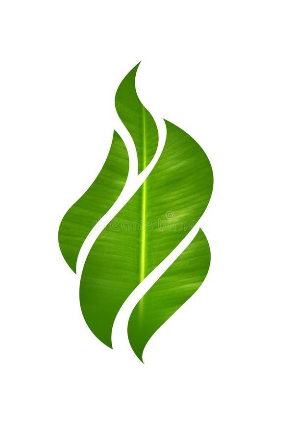 Flame leaf shape stock image