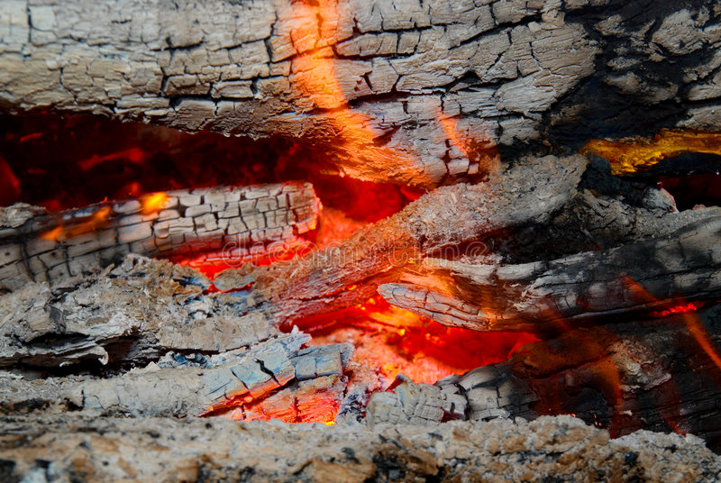 Download Flame Tips On The Firewood. Stock Image - Image: 7336445