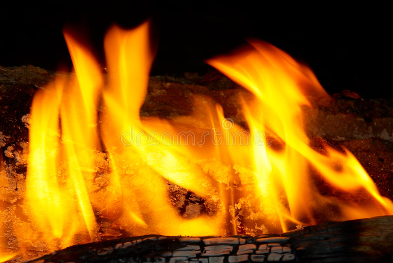 Flame Tips On The Firewood. Stock Image
