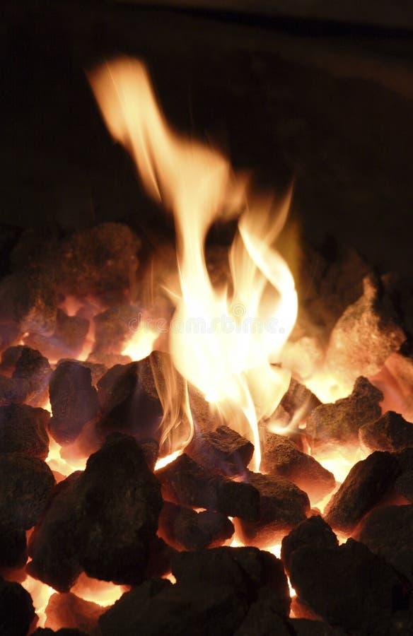 flame5 royaltyfria foton