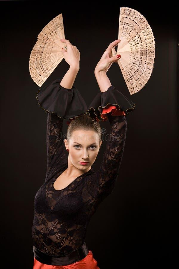 Flamenco royalty-vrije stock fotografie
