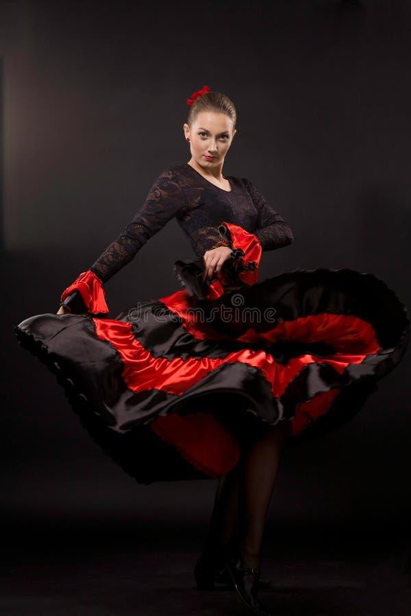 Flamenco imagem de stock