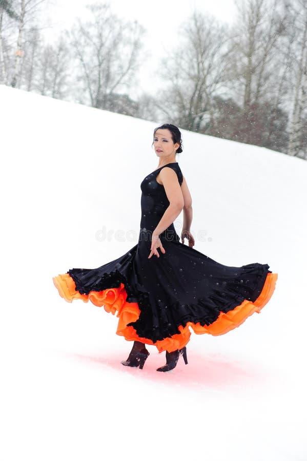 flamenco στοκ φωτογραφία με δικαίωμα ελεύθερης χρήσης