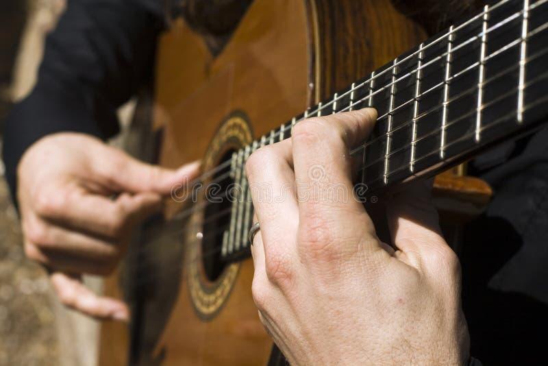 flamenco στοκ φωτογραφίες