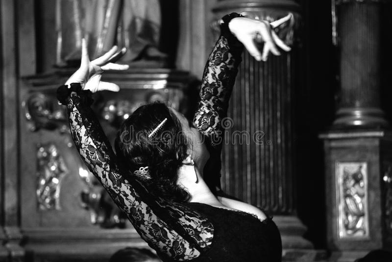flamenco photo libre de droits