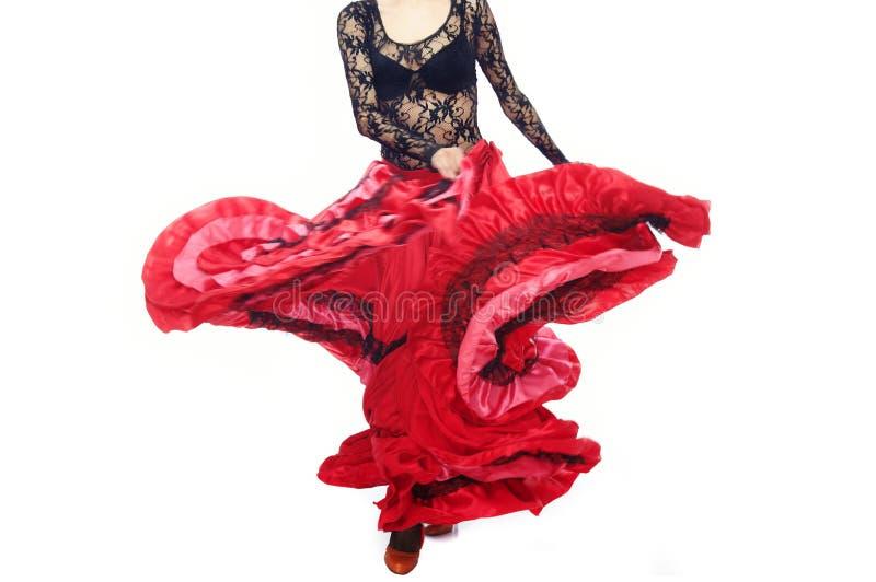 flamenco στοκ εικόνες