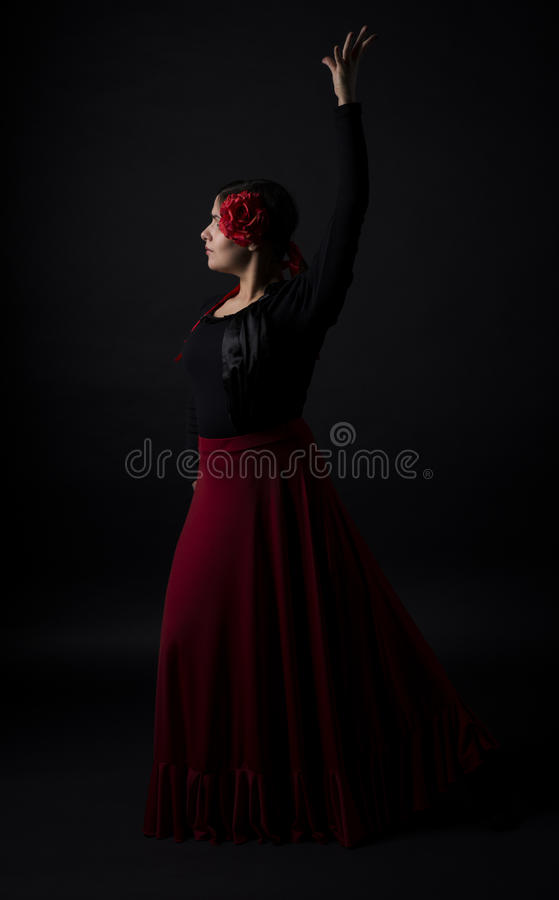 Download Flamenco Dance Stock Photography - Image: 29112072