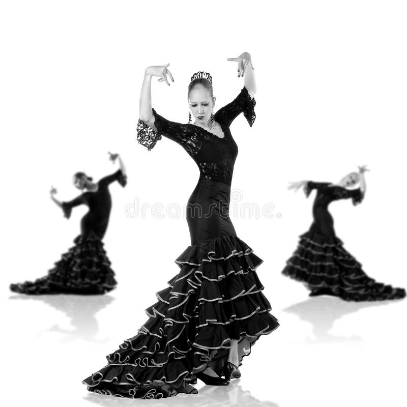 Flamenco dancer. Portrait of young elegance Flamenco dancer. Isolated over white background royalty free stock images