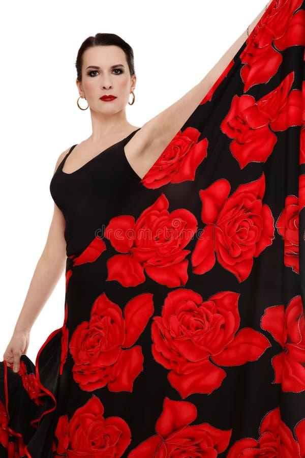flamenco de danseur image libre de droits