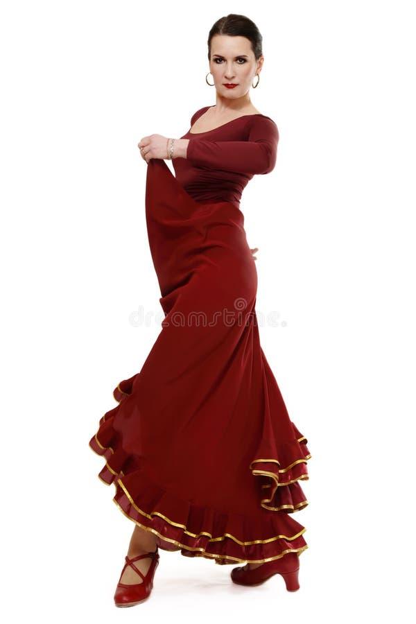 flamenco de danseur images stock