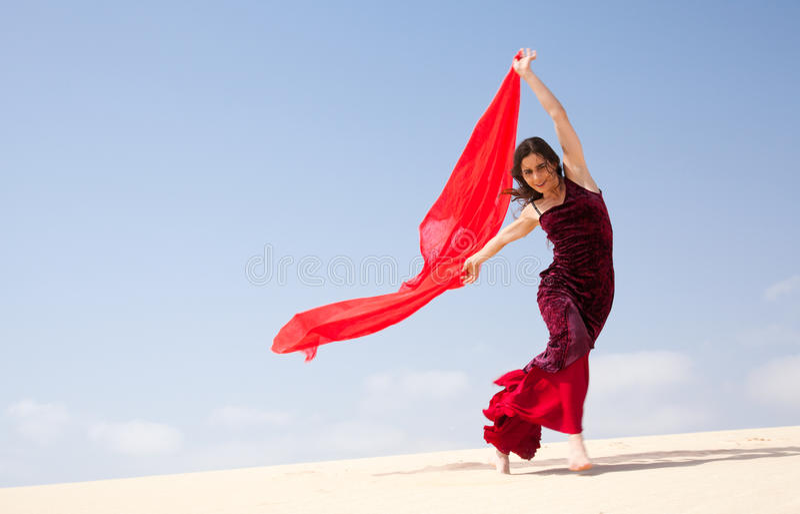 Flamenco in den Dünen lizenzfreies stockfoto