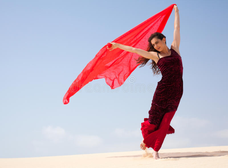 Flamenco in den Dünen stockbild