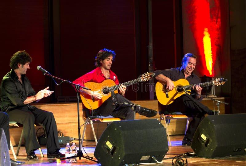 Flamenco Nino de Pura da companhia fotos de stock royalty free