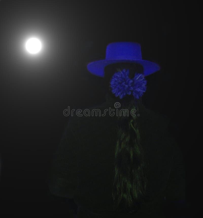 Download Flamenco noc zdjęcie stock. Obraz złożonej z taniec, plecy - 47406
