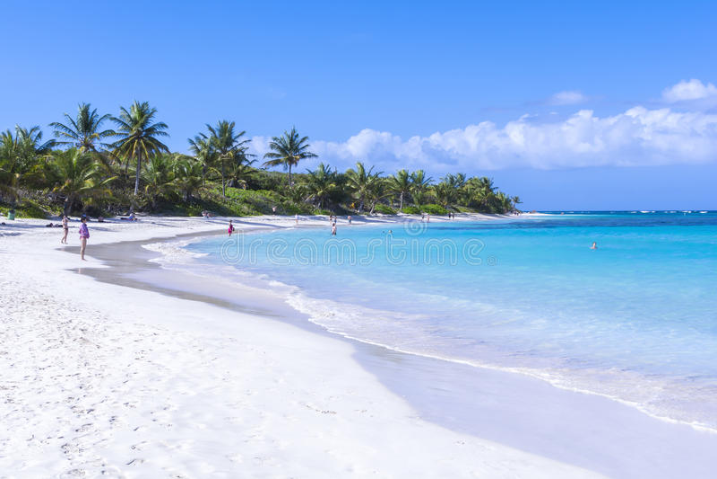 Flamenco plaża zdjęcie stock