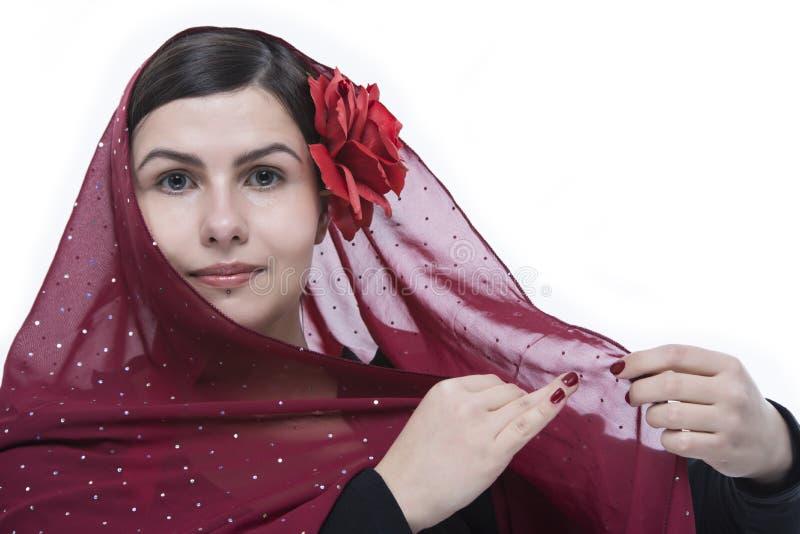 Download Flamenco portrait stock image. Image of portrait, dress - 29112165