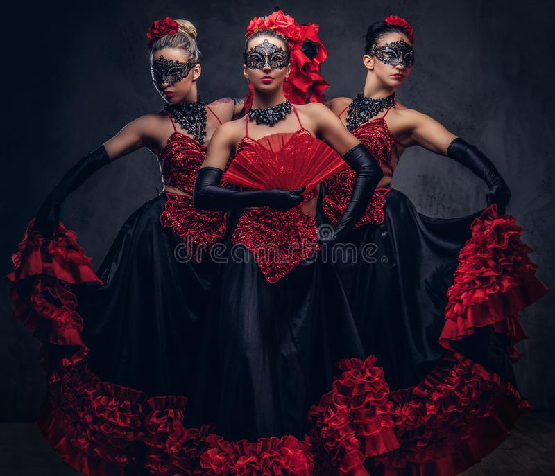 Flamenco spanish seductive dancers wearing traditional costume. Isolated on a dark background stock images