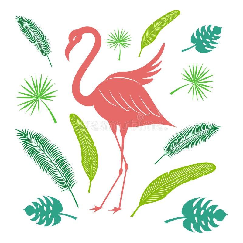 Flamenco y hojas tropicales de la palma y del plátano Sistema brillante del verano Ejemplo estilizado del vector libre illustration