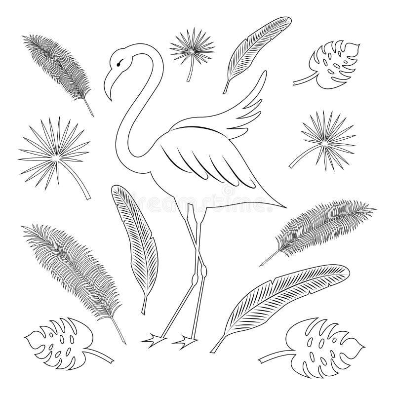 Flamenco y hojas tropicales: palma de coco, fan de la palma, textura del plátano Esquema negro Sistema del verano vector estiliza libre illustration