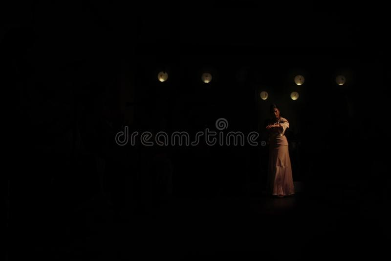 Flamencodansare i mörkret royaltyfri bild