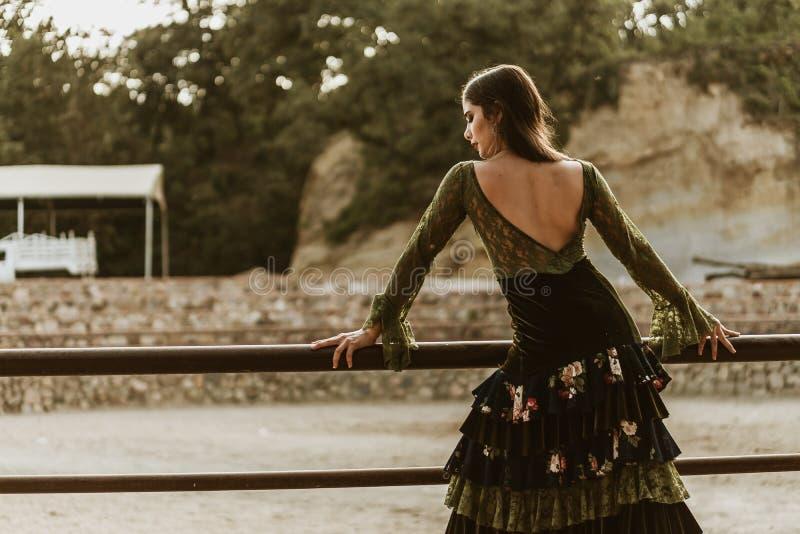 Flamencomeisjes in de boerderij stock foto