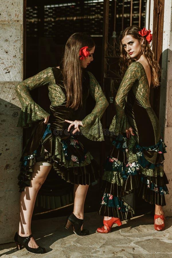 Flamencomeisjes in de boerderij stock afbeelding