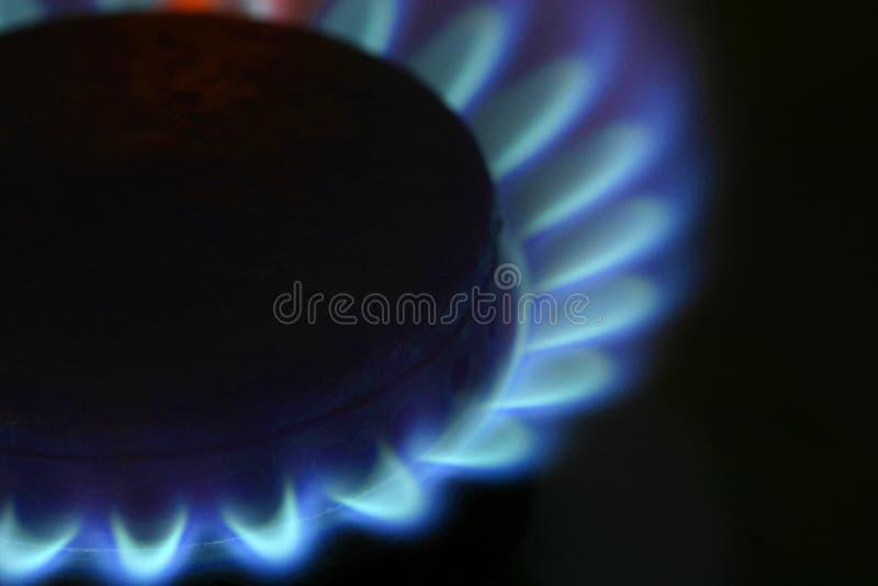 flames στοκ εικόνες