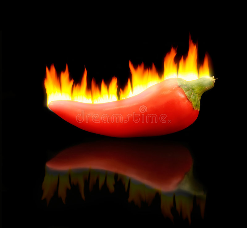 Flaming Hot Pepper royalty free stock photos