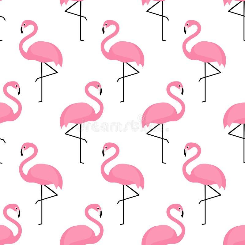Flaminga bezszwowy wzór na białym tle ilustracja wektor